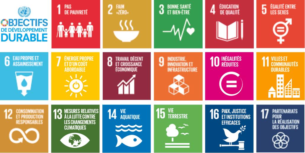 Transformer la planète avec les ODD
