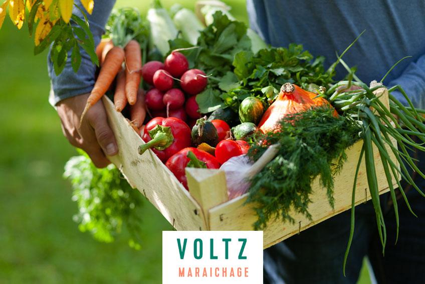 sélectionne, développe et distribue les meilleures variétés de légumes