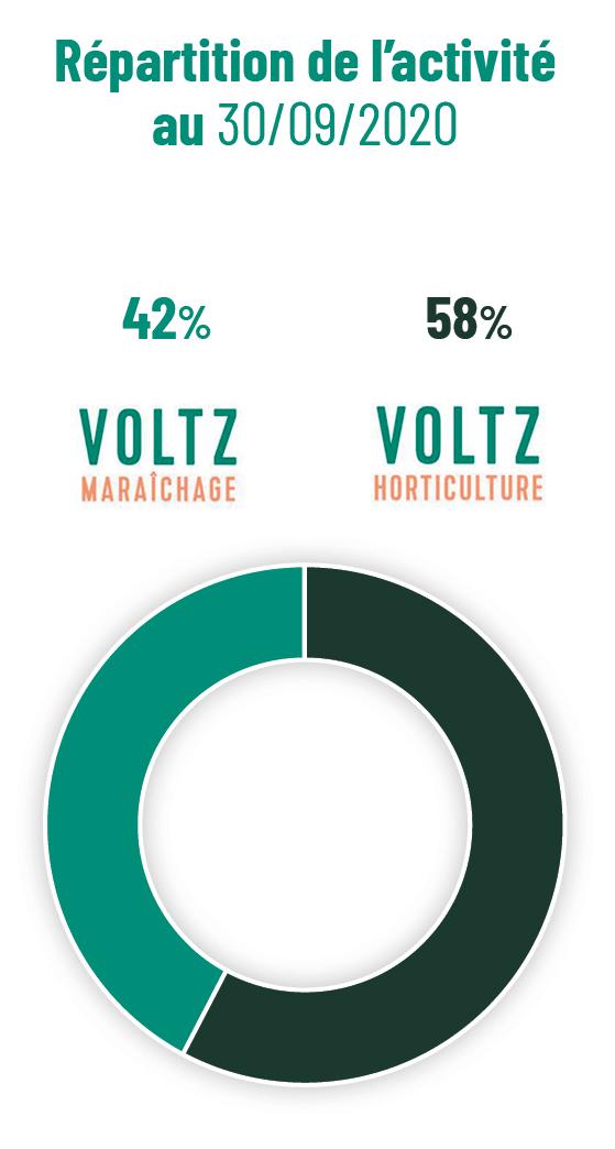 Graines Voltz_repartition_activité