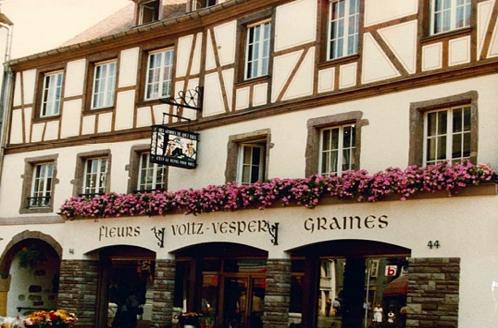 Graines Voltz : NAISSANCE D'UN ACTEUR RÉGIONAL À COLMAR