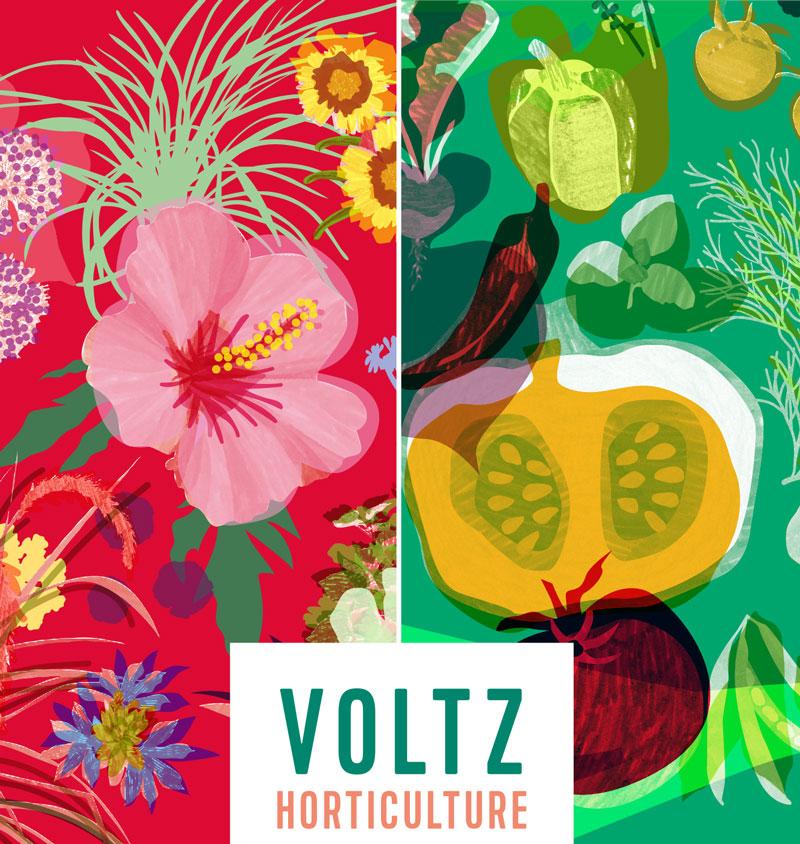Voltz Horticulture